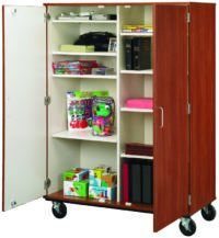 "67"" Tall Closed Divided Mobile Storage"